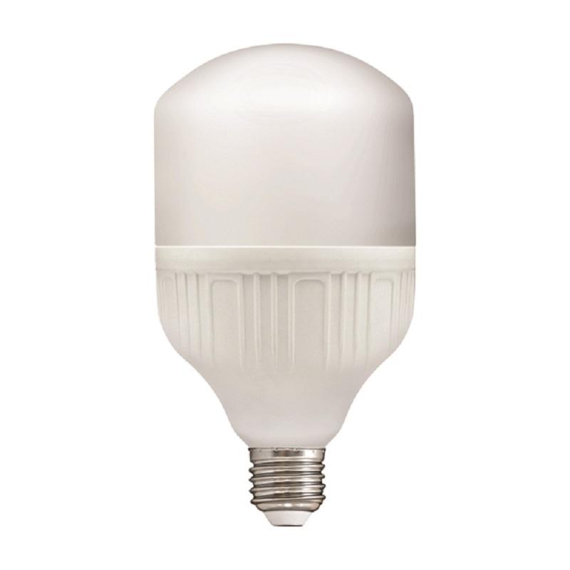 Лампа светодиодная LED E27, Т100, 30Вт, 230В, 6500К, хол. дневной свет